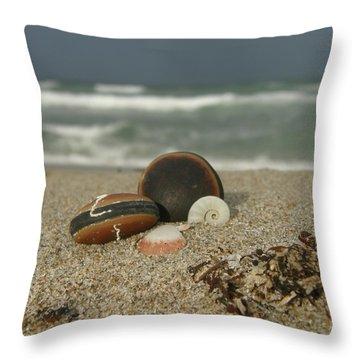 Beach Treasures 1 Throw Pillow by Kimberly Mohlenhoff