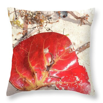 Beach Treasures 1 Throw Pillow