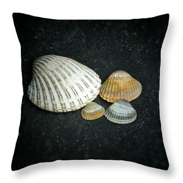 Throw Pillow featuring the photograph Beach Treasures  by Karen Stahlros