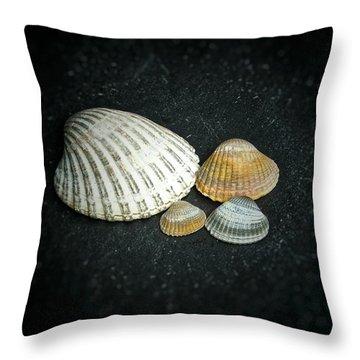 Beach Treasures  Throw Pillow by Karen Stahlros