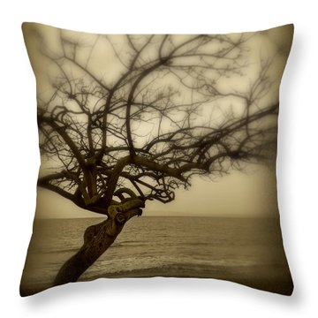 Beach Tree Throw Pillow by Perry Webster