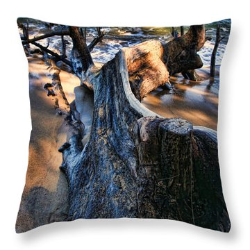 Beach Wood Throw Pillow by John Bushnell