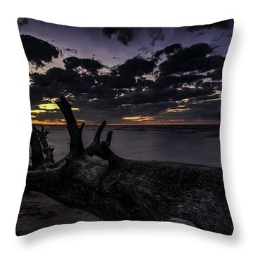 Beach Wood Throw Pillow