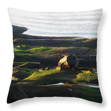 Beachcomber's Gold Throw Pillow by Anne Havard