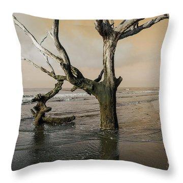 Beachcombing Throw Pillow
