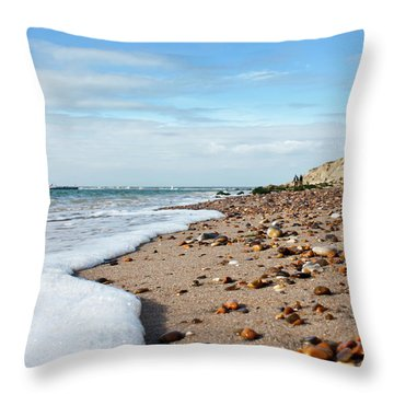 Beachcombing Throw Pillow by Terri Waters