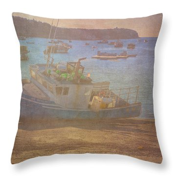 Beached For Cleaning Throw Pillow by Tom Singleton
