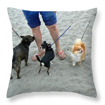 Beachen Toy Doggies Throw Pillow by Pamela Patch