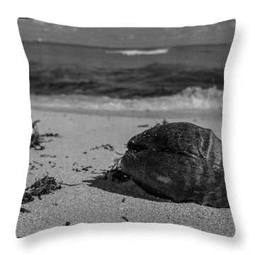Throw Pillow featuring the photograph Beachside by Melinda Ledsome
