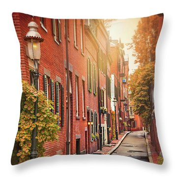 Brownstones Throw Pillows