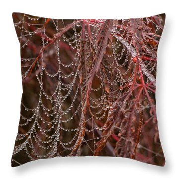 Beads Of Raindrops Throw Pillow
