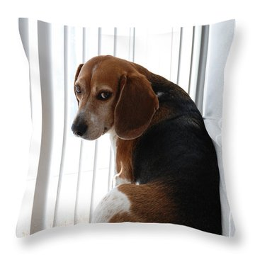 Beagle Attitude Throw Pillow