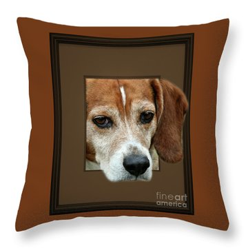 Beagle Peeking Out Throw Pillow