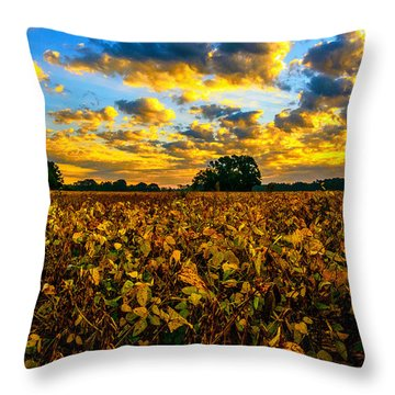 Bean Field Splendor  Throw Pillow