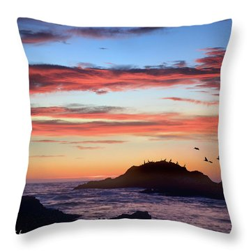 Bean Hollow Beach Throw Pillow by Tim Fitzharris