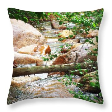Throw Pillow featuring the photograph Bear Creek Cheyenne Canyon by Clarice  Lakota