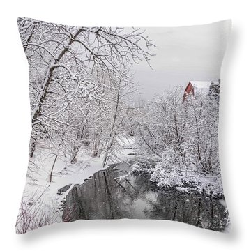 Silver Creek Throw Pillow