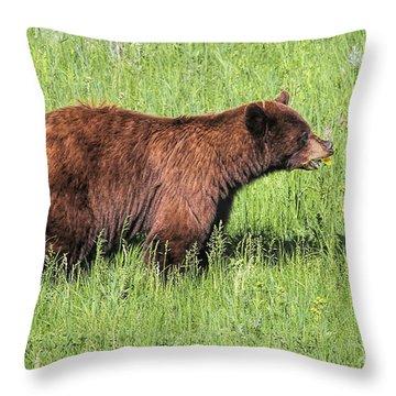 Bear Eating Daisies Throw Pillow