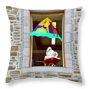 Throw Pillow featuring the photograph Bear Formally Known As Teddy by John Schneider