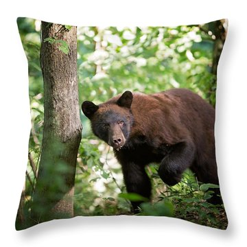 Bear In The Woods Throw Pillow
