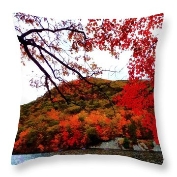 Throw Pillow featuring the photograph Bear Mountain Hessian Lake Autumn by Janine Riley