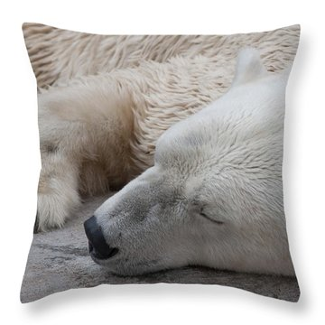 Bear Nap Throw Pillow