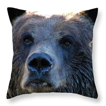 Bear On Grouse Throw Pillow