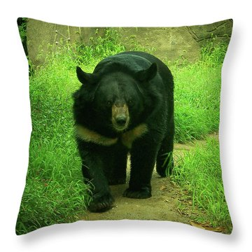 Bear On The Prowl Throw Pillow
