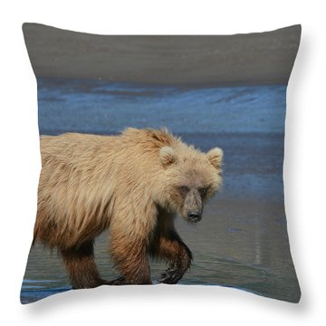 Bear Stare Throw Pillow