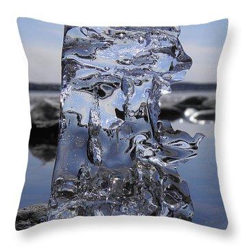 Throw Pillow featuring the photograph Bear Sunbathing by Sami Tiainen