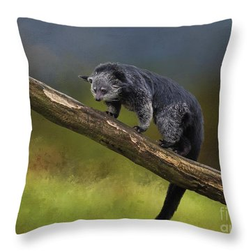 Bearcat Throw Pillow