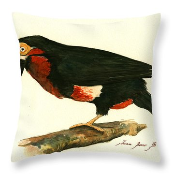 Bearded Barbet Throw Pillow by Juan Bosco