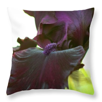 Throw Pillow featuring the photograph Bearded Beauty by Deborah  Crew-Johnson