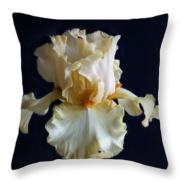 Throw Pillow featuring the photograph Bearded Iris 3 by Elena Nosyreva