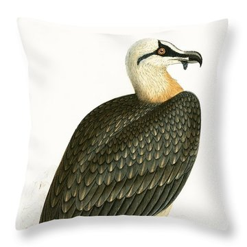 Bearded Vulture Throw Pillow by English School