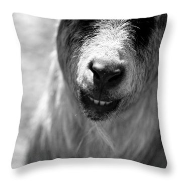 Throw Pillow featuring the photograph Beardy Smiley by Angela Rath