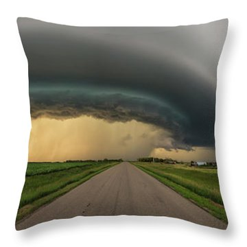 Throw Pillow featuring the photograph Beast by Aaron J Groen
