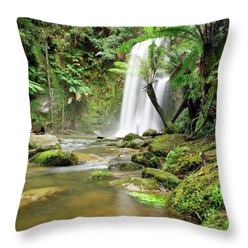 Beauchamp Falls Throw Pillow
