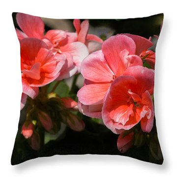 Throw Pillow featuring the photograph Beauteous Begonia by Cathy Donohoue