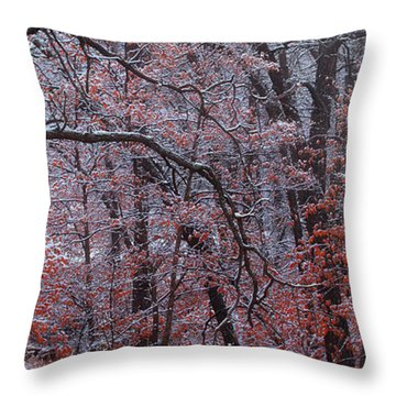 Beautful Change Throw Pillow