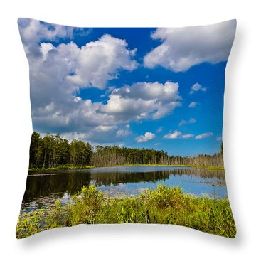 Beautiful Afternoon In The Pine Lands Throw Pillow
