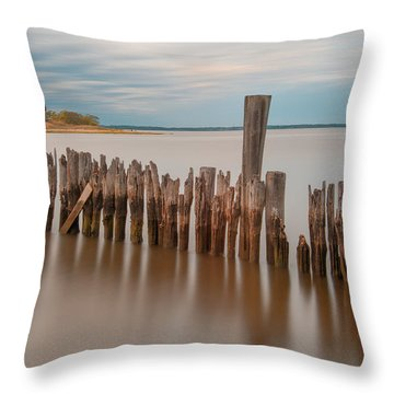 Beautiful Aging Pilings In Keyport Throw Pillow by Gary Slawsky