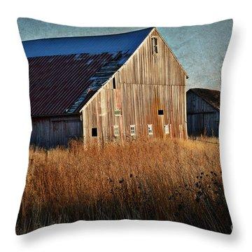 Beautiful Barn In Autumn  Throw Pillow