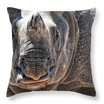 Beautiful Beast Throw Pillow
