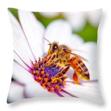 Beautiful Bee On Daisy Throw Pillow