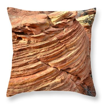 Throw Pillow featuring the photograph Beautiful Beehive by Ray Mathis