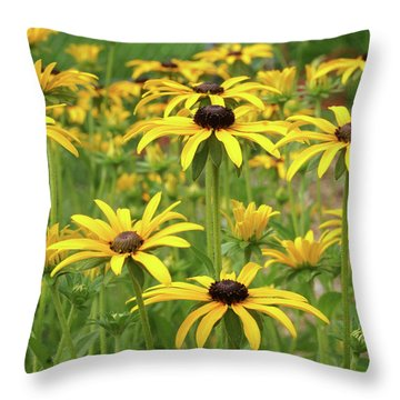 Beautiful Black Eyes Throw Pillow