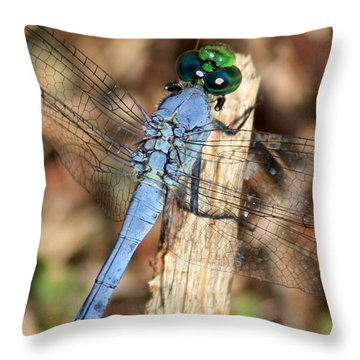 Beautiful Blue Eyes Throw Pillow by Carol Groenen