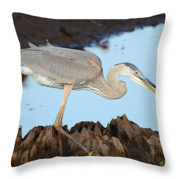 Beautiful Blue  Throw Pillow by Kathy Gibbons
