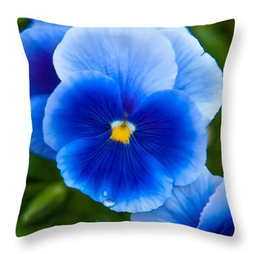 Beautiful Blues Throw Pillow